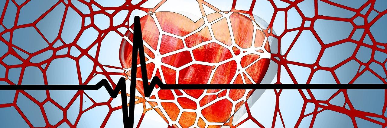 Влияние алкоголя на сосуды и кровеносную систему